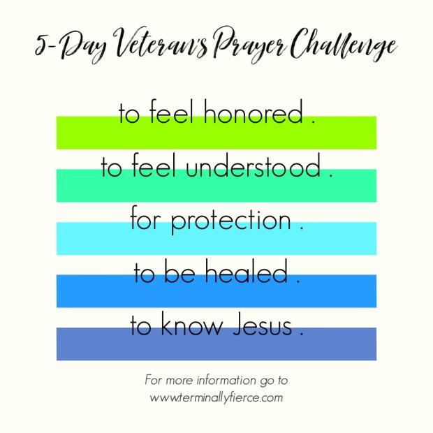 Vet Challenge